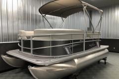 D-Rail Panel Design of a 2020 SunChaser Vista 16 LR Pontoon Boat